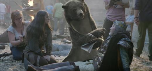 el oso que queria ser director de cine
